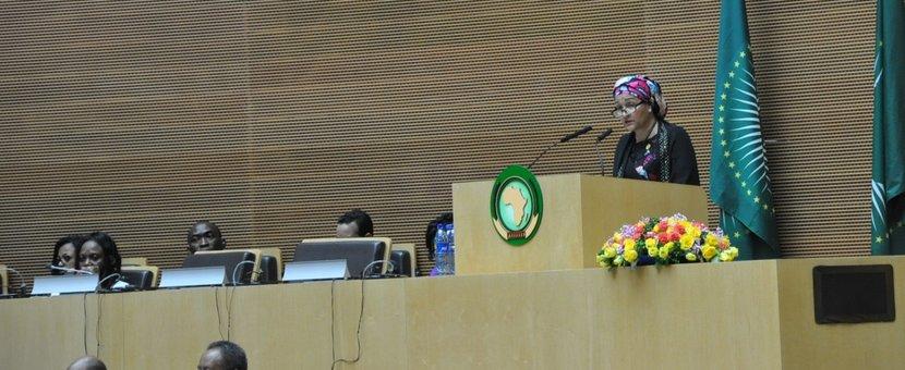 UNDSG at 29th AU Summit